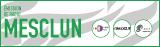 L'émission «Mesclun» avec Radio Dialogue
